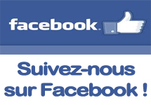 bouton-facebook-lateral